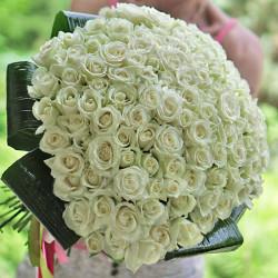 "101 white rose ""Avalanche"" 50 sm"
