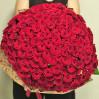 Букет 101 бархатная роза Grand Prix, высота 60 см