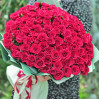 101 scarlet low rose buy with delivery