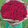 """101 red rose """"Red Naomi"""" 50 cm buy with delivery"""