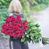 Букет 35 темно-красных метровых роз (Эквадор, сорт Explorer)