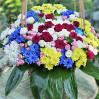 Basket of flowers Cheerful mix buy with delivery