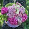 Цветочная коробка с гортензиями и розами на заказ
