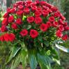 Ритуальная корзина из 40 красных роз на заказ