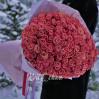 Огромный букет 101 метровая персиковая роза сорта Miss Piggy