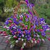 Huge bouquet of 151 Tulip and iris in basket custom made