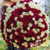 Огромный букет 301 роза красная и белая на заказ
