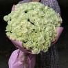 """101 белая роза """"Avalanche"""", высота 50 см"""