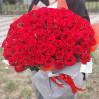 101 алая роза высота 60 см