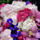 A bouquet of peonies to order in Kyiv and the region