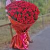 """Букет из 101 яркой алой розы, сорт """"Ред Игл"""""""