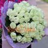 """51 белая роза """"Аваланж"""""""