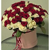 101 роза: монохром и тандем с другими цветами