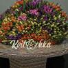 501 разноцветный тюльпан купить с доставкой