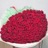 Букет красных роз 251