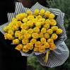 """51 желтая роза """"Пенни Лейн"""" высотой 70 см"""
