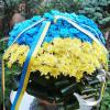 Basket of flowers 'Ukrainian Flag'