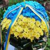 """Корзина цветов """"Флаг Украины"""" с доставкой в Киевской области"""