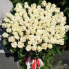 Bouquet of 101 roses cream high buy cheap in Kiev