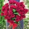 31 красная роза из Эквадора
