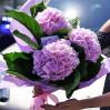 Букет из трех розовых гортензий купить недорого с доставкой в Киеве