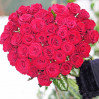 51 алая голландская роза в виде сердца 100 см купить с доставкой