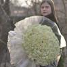Букет 151 белая роза