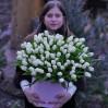 101 белый тюльпан в коробке на заказ с доставкой