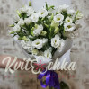 Bouquet of 11 white eustomas to buy in Kiev with delivery around the clock