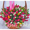 Basket of tulips 151шт