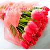 Luxury bouquet of pink tulips