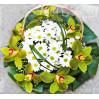 """Цветочная корзина с орхидеями """"Свежесть"""""""