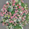 Пышный большой букет с кустовыми розами и альстромериями Лидия