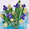 Весенний микс : букет с ирисами и тюльпанами купить в Киеве