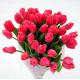 Букеты с тюльпанами купить с доставкой в Киеве