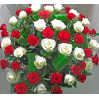 Basket of 51 red roses and white MIX