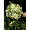 Букет невесты капля № 73