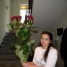 7 голландских красных роз купить в Киеве