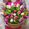 Микс из тюльпанов 45 шт в корзине купить с доставкой