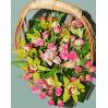 """Композиция в корзине с орхидеями """"Элизе"""" на заказ"""