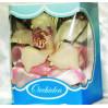 Орхидея в коробочке №1 с доставкой в Киеве