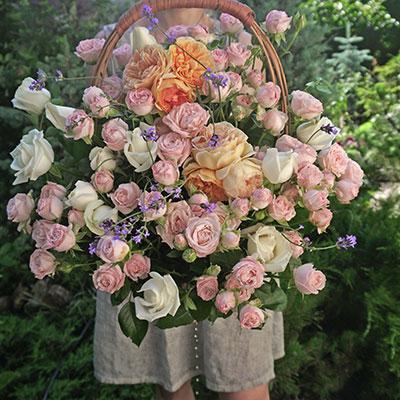 Roses delivery Kiev