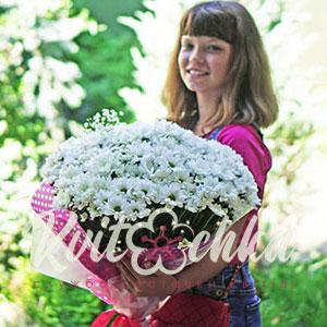 Доставка квітів Київ: букет ромашок